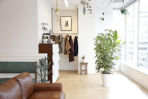 住まいの「広さ」と「理想の家具・荷物の量」
