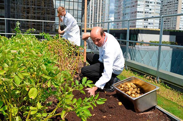 稼ぐ都市農家が増えている?!しかし、不動産の『2022年問題』が・・・!