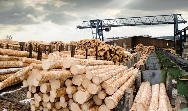 深刻な木材不足が引き起こす住宅問題